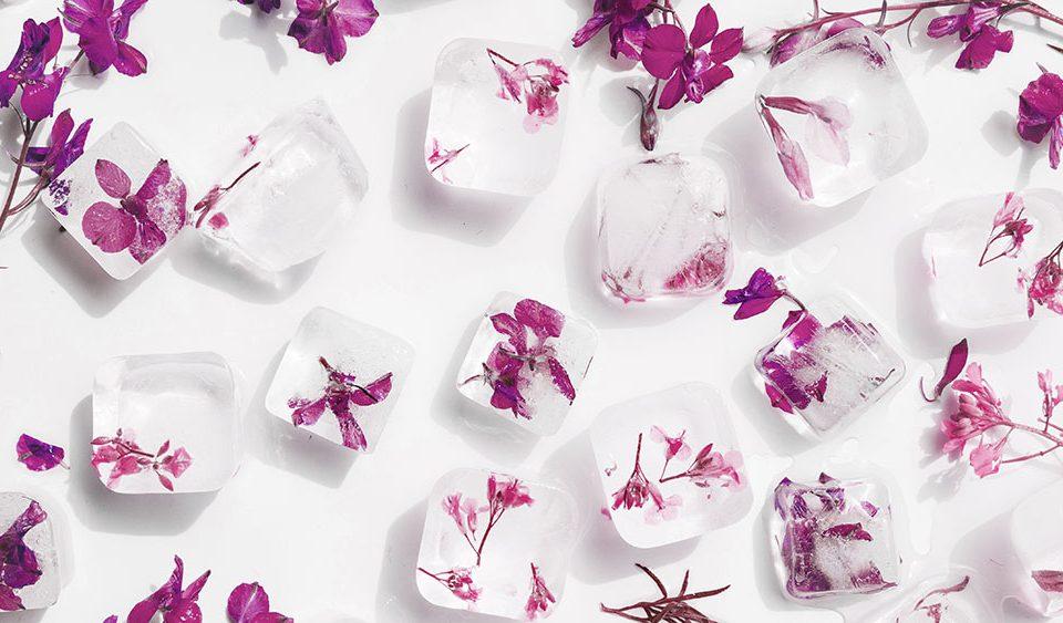 Cubetti di ghiaccio con fiori